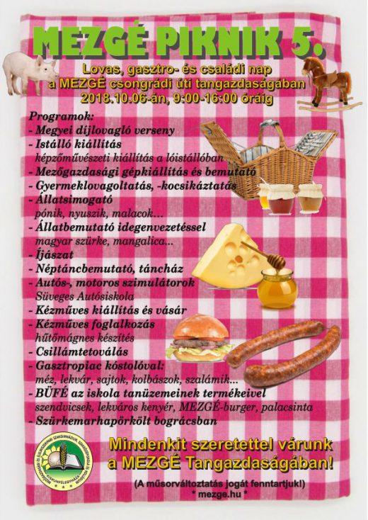 piknik5_plakat_600x